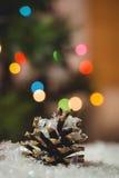 Конец-вверх конуса сосны на снеге Стоковое Фото