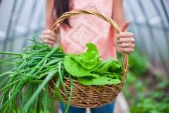 Конец-вверх корзины зеленеет в руках женщины Стоковая Фотография RF