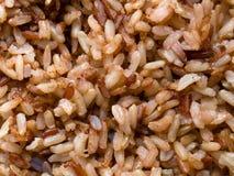 Конец-вверх коричневого риса сварено стоковые изображения rf