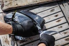 Конец-вверх коричневого surgeonfish на палубе стоковое фото