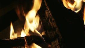Конец-вверх костра вечером, швырок горит, пламена огня в лагерном костере видеоматериал