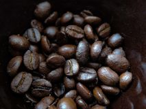 Конец-вверх кофейных зерен в коричневой чашке macrophotography стоковые фото
