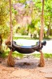 Конец-вверх красивого качания в саде Стоковая Фотография RF