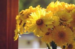Конец-вверх красивых желтых цветков в вазе Стоковое фото RF