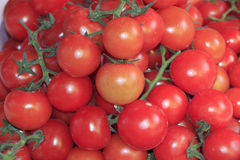 Закройте вверх красных малых томатов стоковые изображения rf