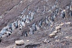 Конец-вверх ледника в канадских скалистых горах стоковые фото