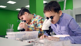 Конец-вверх мальчиков работая в лаборатории 4K сток-видео