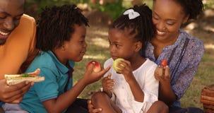 Конец вверх милой семьи ест в парке акции видеоматериалы