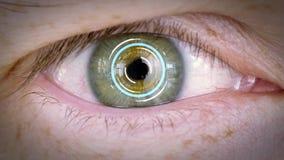 Конец вверх мужского глаза с радужкой или ретинальной разверткой