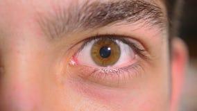 Конец-вверх мужского глаза получая вспугнутый сток-видео