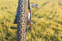 Конец-вверх на велосипеде на задней части Стоковые Изображения RF