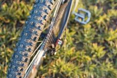 Конец-вверх на велосипеде на задней части Стоковое Изображение