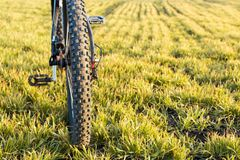 Конец-вверх на велосипеде на задней части Стоковые Фотографии RF
