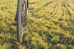 Конец-вверх на велосипеде на задней части Стоковое Фото