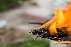 Конец-вверх огня дыма конца-Вверх деревянного огня деревянный Стоковое Фото