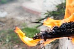 Конец-вверх огня дыма конца-Вверх деревянного огня деревянный Стоковое фото RF