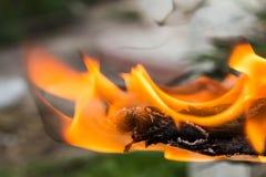 Конец-вверх огня дыма конца-Вверх деревянного огня деревянный Стоковые Фотографии RF
