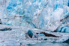 Конец-вверх огромного ледника в Патагонии Стоковая Фотография RF