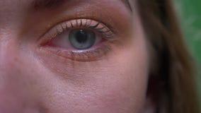 Конец-вверх один портрет глаза белокурых модельных дозоров спокойно и умышленно в камеру на зеленой предпосылке chromakey акции видеоматериалы
