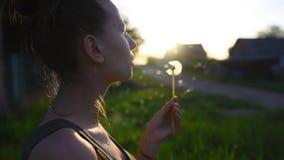 Конец-вверх одуванчика девочка-подростка дуя на заходе солнца акции видеоматериалы