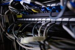 Конец-вверх локальных сетей соединенных в гнезде Стоковые Фото
