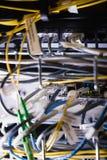 Конец-вверх локальных сетей соединенных в гнезде Стоковая Фотография