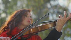 Конец-вверх пальцев на скрипке Женские руки скрипача сток-видео