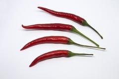Конец-вверх перцев chili на белой предпосылке стоковое фото rf