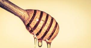Конец вверх по лить золотому сладкому капанию меда на dippe меда стоковые изображения