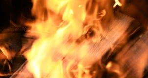 Конец вверх по пламенам костра располагаясь лагерем огня акции видеоматериалы