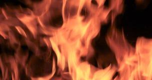 Конец вверх по пламенам костра располагаясь лагерем огня видеоматериал
