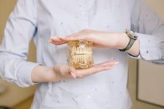 Конец вверх по фото denture зубов модельного в руках доктора Регулярн проверки необходимы к устному здоровью стоковое фото rf