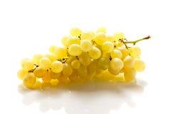 Конец-вверх пука зрелых виноградин Стоковое Изображение