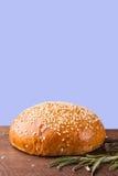 Конец-вверх плюшки бургера с семенами сезама Стоковое Изображение RF