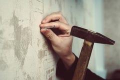 Конец-вверх разнорабочего бить молотком ноготь молотком в доске стоковые изображения rf