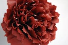 Конец-вверх роз красного бутона искусственных Стоковое Изображение