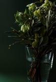 Конец-вверх романтичного зеленого букета цветка стоковая фотография