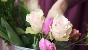 Конец-вверх руки женщины выбирая цветки для букета сток-видео