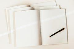 Конец-вверх ручки на предпосылке больших открытых пустых и пустых тетрадей в клетке, взгляд сверху, текстуре установьте текст Стоковые Изображения RF