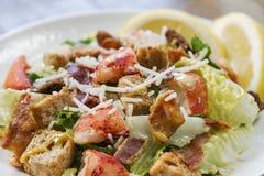 Конец-вверх салата цезаря омара Стоковое Фото