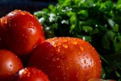 Конец-вверх свежих, зрелых томатов, баклажана и петрушки белизна группы калибра 22 пуль Стоковая Фотография RF