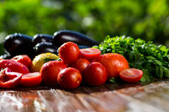 Конец-вверх свежих, зрелых томатов, баклажана, сладостного красного перца и Стоковое фото RF