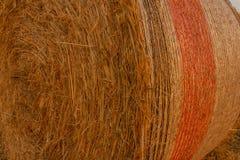 Конец-вверх связки сена цилиндрической в поле Стоковое Изображение RF