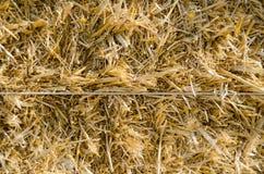 Конец-вверх связки сена Стоковые Фотографии RF