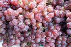Конец-вверх связок винограда Стоковые Фото