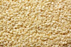 Конец-вверх семян сезама Стоковые Изображения RF