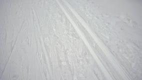 Конец-вверх следа След лыжи в конце-вверх древесин 4K акции видеоматериалы