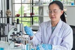 Конец вверх снял азиатских ученых женщины, экспертной пробирки делая исследование стоковая фотография rf