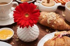 Конец-вверх снял красного цветка в вазе среди здорового завтрака стоковые фотографии rf