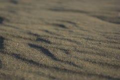 Конец-вверх струясь песка пляжа стоковое изображение rf